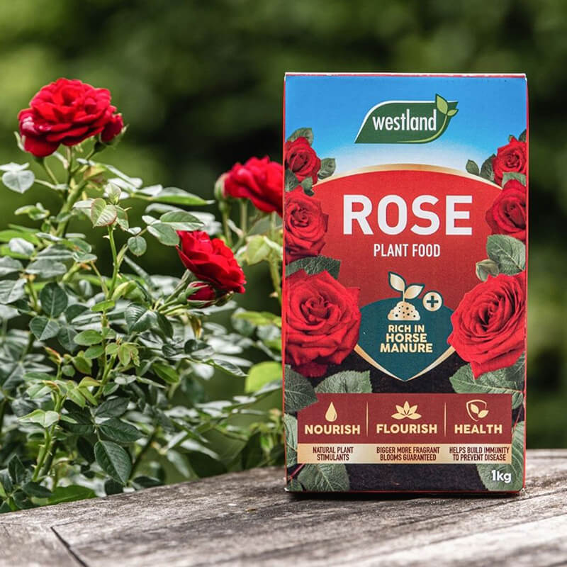 Rose Food Enriched Horse Manure  1kg