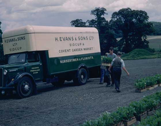 Delivery Information - H Evans and Sons Van