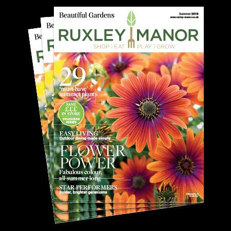 2019 Beautiful Summer Magazine