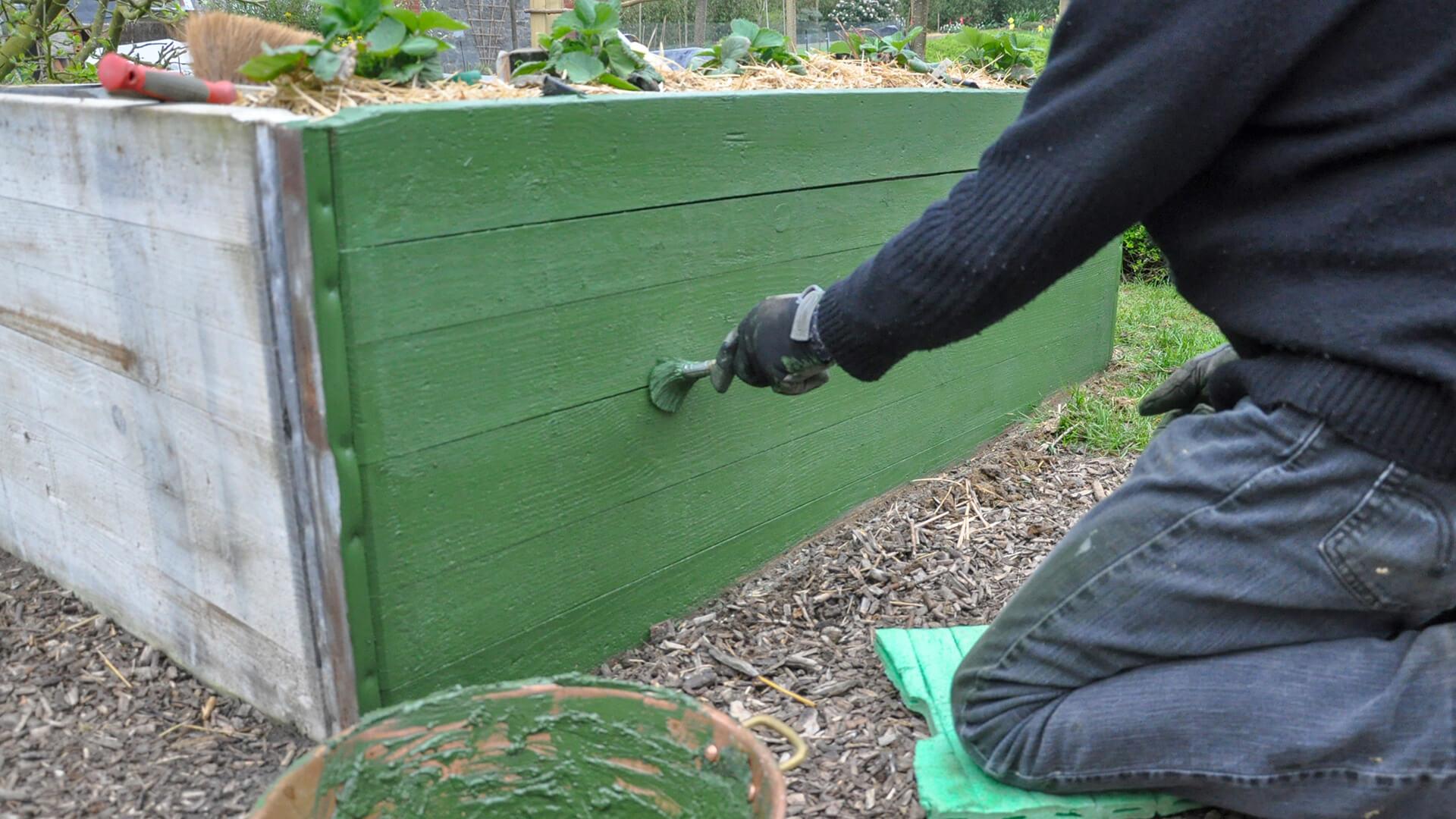 December Gardening Guide