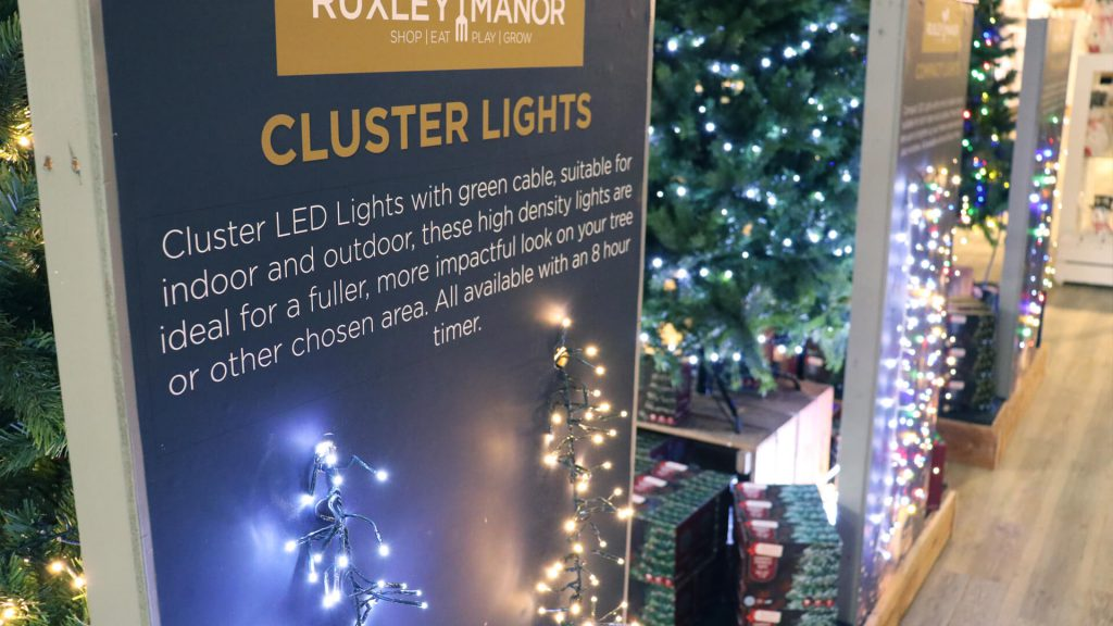 Christmas Lights at Ruxley Manor
