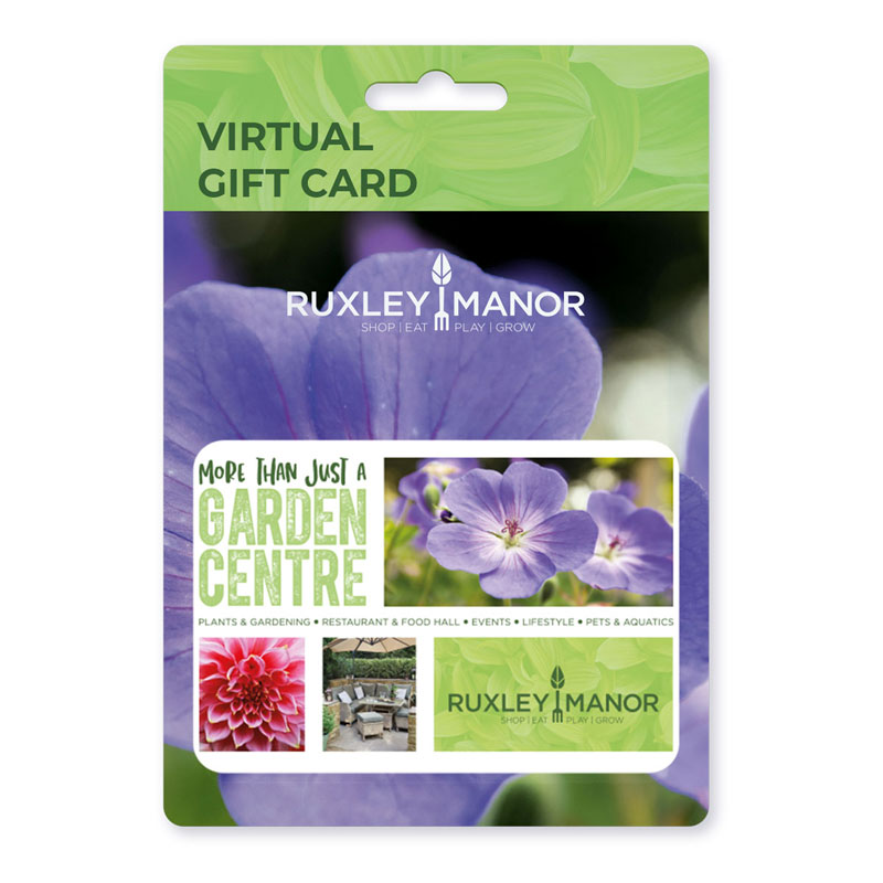 Digital Email Gift Cards