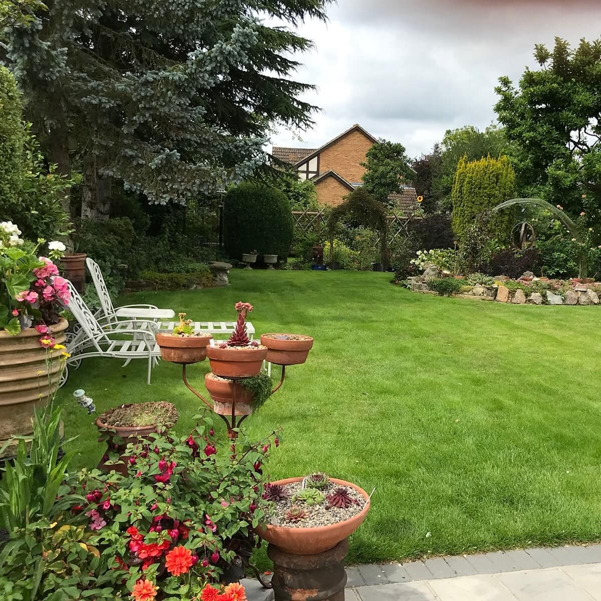 Best Back Garden Patricia Wells