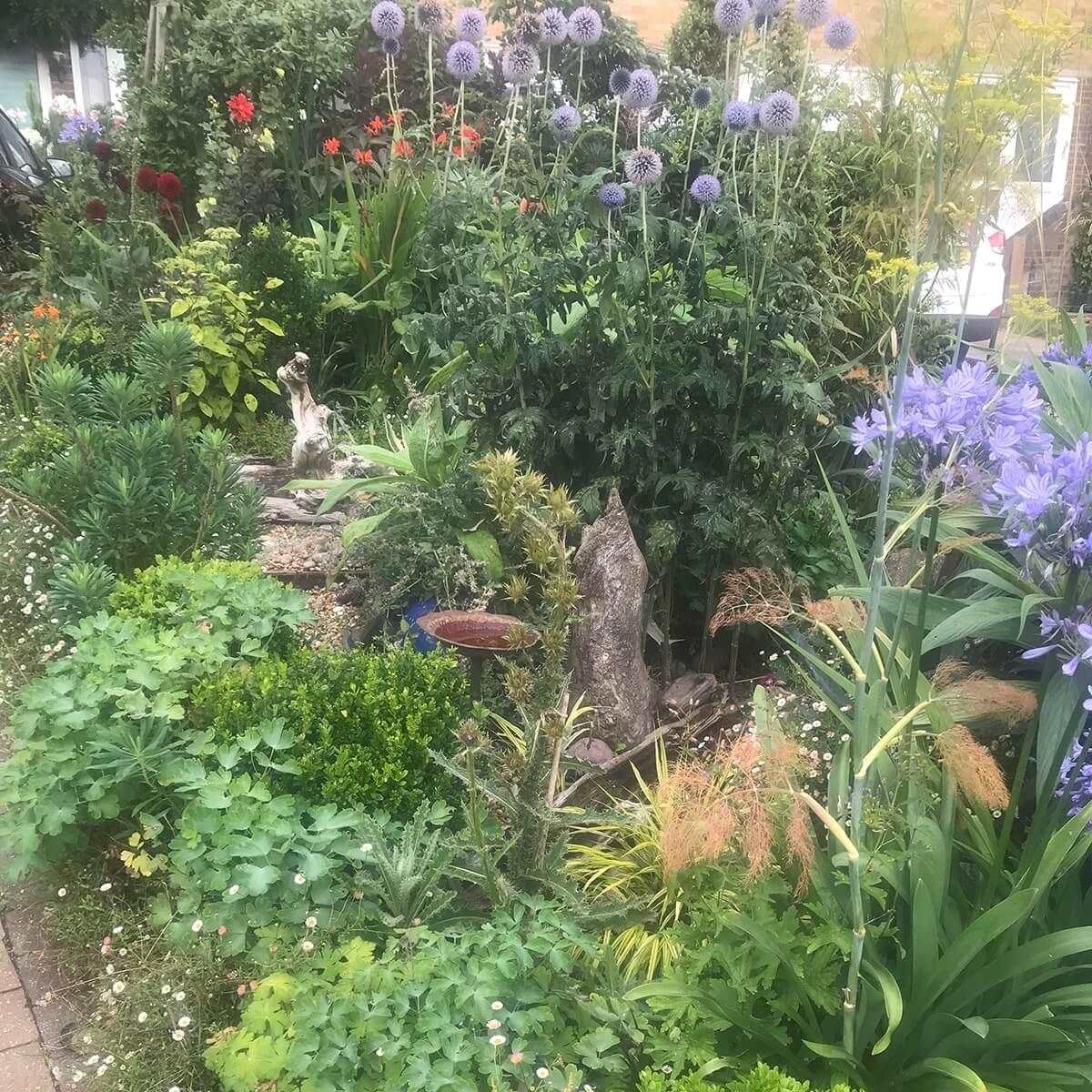 Best Front Garden Ruxley in Bloom