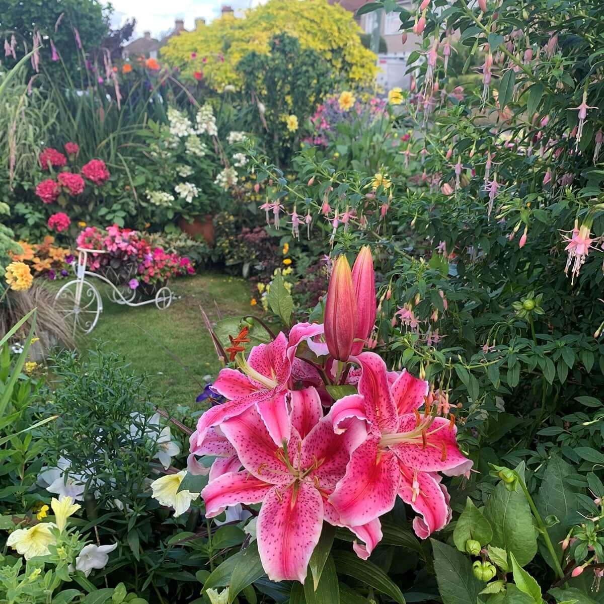 Best Front Garden Seasonal